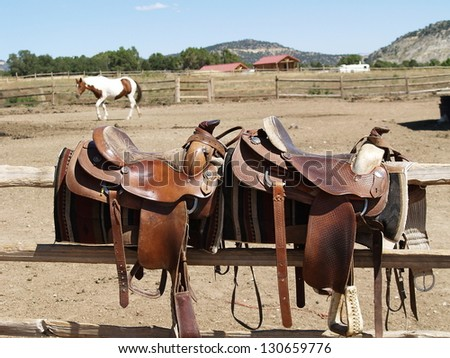 Saddles with a horse in the background