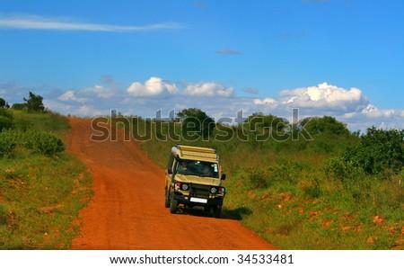 Safari. Africa. Kenya. Masai Mara