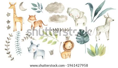Safari animals watercolor illustration with baby elephant, lion, zebra, giraffe, rhinoceros and tropical jungle foliage for nursery