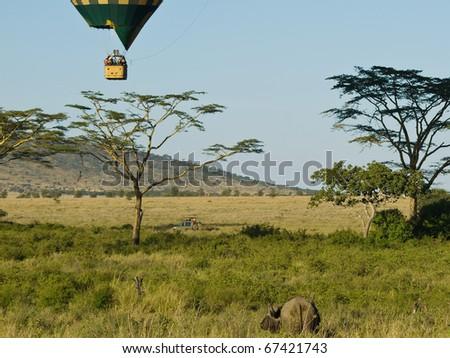 Safari by car and balloon - stock photo