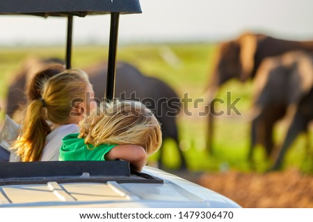 Safari holiday. Blond children watching african elephants from roof of a safari car.  Family on safari holiday in Amboseli national park. Wildlife photography in Kenya, Tanzania.