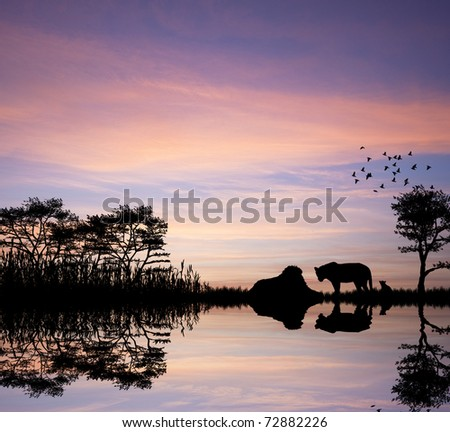 Safari in Africa silhouette of lions reflection in water