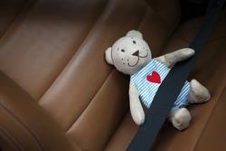 safety belt toy bear