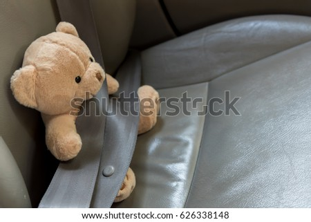 Safety Seat Belt to Teddy Bear Stuffed .Safety Concept . Insurance Concept  #626338148