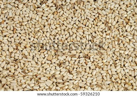 Safflower seeds close up as background