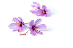 Saffron is a spice derived from the flower of Crocus sativus, commonly known as the