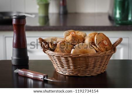 Saffron Milk Caps in Basket on Kitchen Table Zdjęcia stock ©