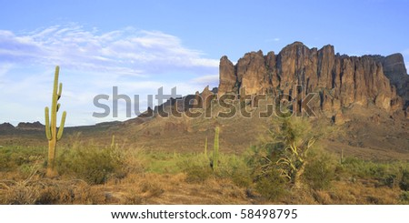 saguaro cactus and Superstition Mountains