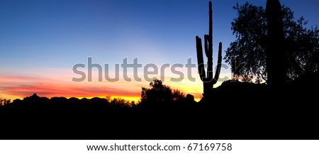 Saguaro silhouette in red blue sky.
