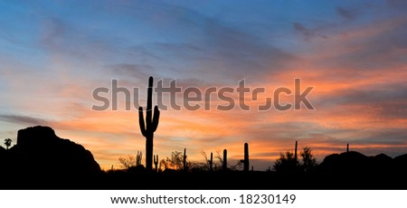 stock photo : Saguaro silhouette in red sunset lit clouds.