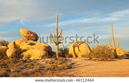 Saguaros and boulders catching last days rays.