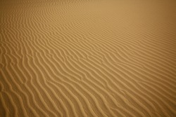 Sahara desert Close Up Shot