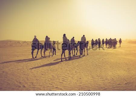 Sahara desert. Filtered image:cross processed vintage effect.