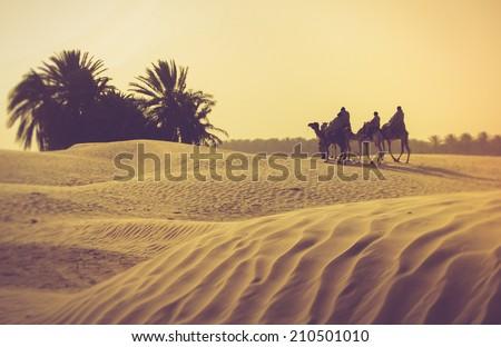 sahara desert. filtered image...