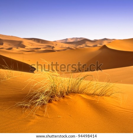 Sahara desert landscape. Desertification effects background.