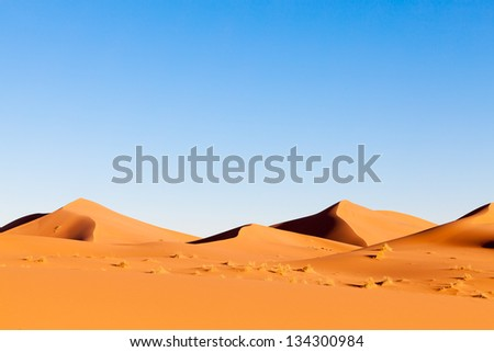 Sahara Desert Landscape With Orange Sand Dunes, Dramatic Shadows And Clear Blue Sky