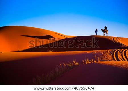 Stock Photo Sahara desert sand