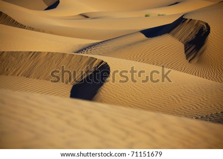 Sahara desert sand dunes in daylight with shadows. Concept for holiday and adventure traveling.