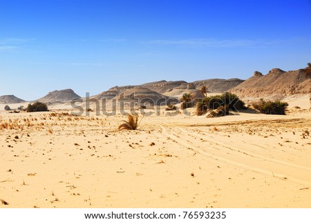 Sahara desert, traces of a vehicle in the Sahara desert, Western desert, Egypt, Africa - stock photo