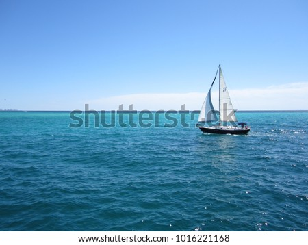 Sailboat at Destin - Shutterstock ID 1016221168