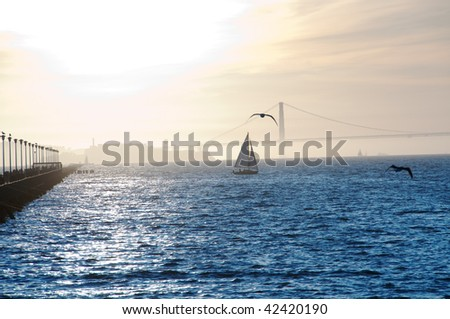 sailboat in front of alcatraz island and the golden gate bridge