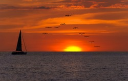 Sailboat sunset fantasy with a silhouetted boat sailing along its journey against a vivid colorful sunset with birds flying in formation against an orange and yellow color filled sky.