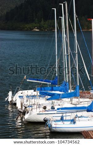 Sailboats at the pier
