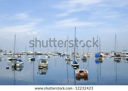 Sailboats docked in Manila Yacht Club, Philippines #12232423