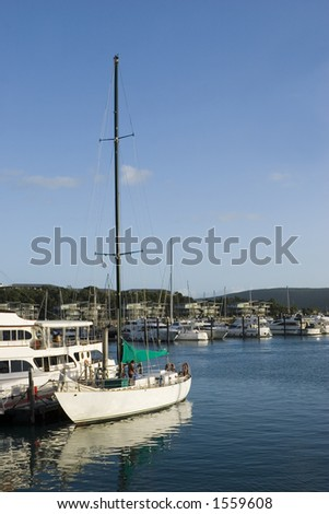 Sailboats docked in the Hamilton Island Yacht Marina in Queensland's Whitsundays in Australia