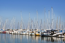 Sailboats in a harbor on a sunny day