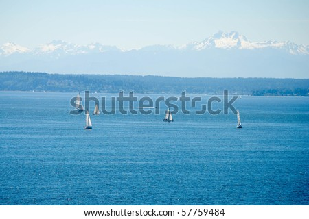 sailboats in Puget Sound with the Olympic mountains in the background