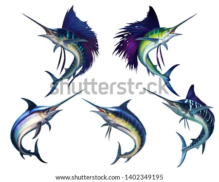 Sailfish fish on white. Striped big marlin. Sports fishing in the open sea. Realistic isolated illustration. Striped marlin on white, fish sword. Black silhouette of a large set of fish.