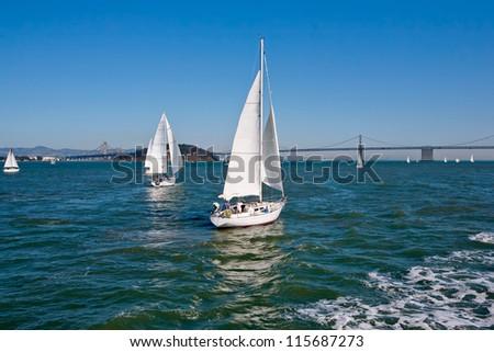 Sailing boat racing in San Francisco. San Francisco bridge at the background.