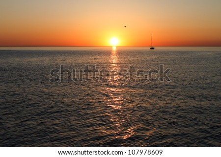 Sailing boat silhouette, sunset, ocean and one bird