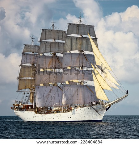 Sailing vessel. Large collection of ships and yachts