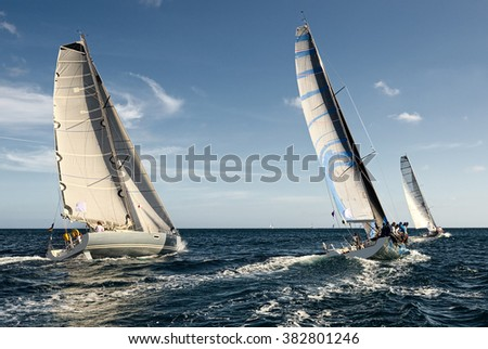 Sailing yacht race. Sailing.  Yachting