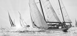 Sailing yachts classic regatta. Yachting. Sailing. Race