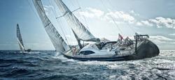 Sailing yachts team at the regatta