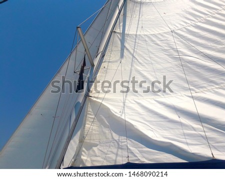 Sails of a sailing yacht in the wind. Mast and rigging. #1468090214