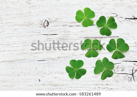 Saint Patricks Day background with green shamrock on white wooden texture top view.