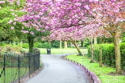 Saint Stephen's Green park, Dublin