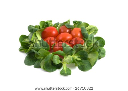 salad and tomatos isolated on the white background