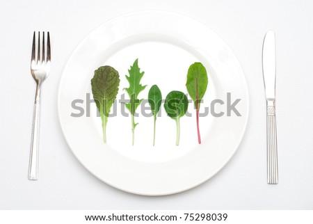 Salad leaf on the plate - stock photo