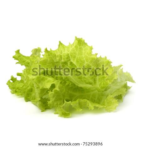 Salad lettuce isolated on white background