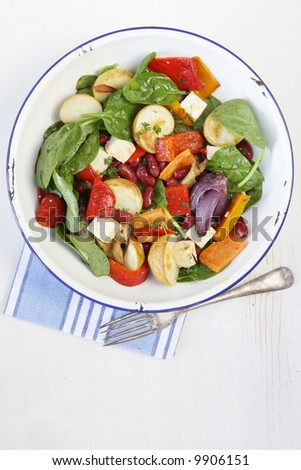Salad of kidney beans and roasted vegetables, with fetta cheese and a balsamic dressing. #9906151