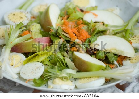 Salad plate.Good presentation for recipes book. Focusing only on the middleground to diversity from classic picture.