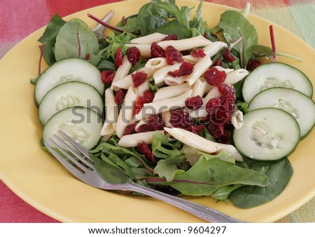 salad with cucumbers, cranberry-raisens ,pasta