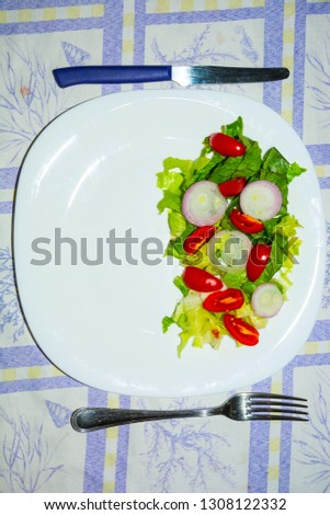 Salad with lettuce and tomato. Fresh and summer dish. typical of Sicily and the Mediterranean. The Mediterranean diet. #1308122332