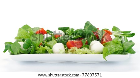 Salad with mozzarella and tomato - stock photo