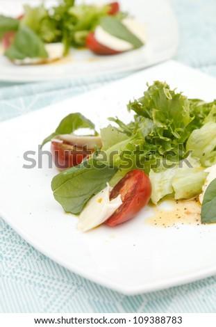 salad with mozzarella, tomatoes and basil